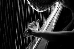 Harfa-na-svatbu