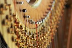 Harfa-na-svatbu4-1